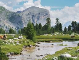 www.oooyeah.de_Dolomiten_Fanis_Plateau