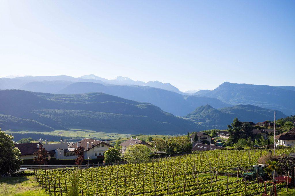 Pack Den Kinderwagen Ein Zur Sommerfrische Nach Sudtirol Out Of Office Ooo Yeah